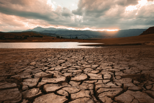 Excess and Lack of Water: Climate Change Issues that Call for Action