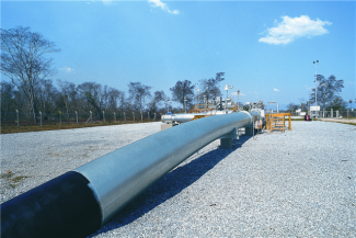 International call for feasibility study for Urupabol gas project